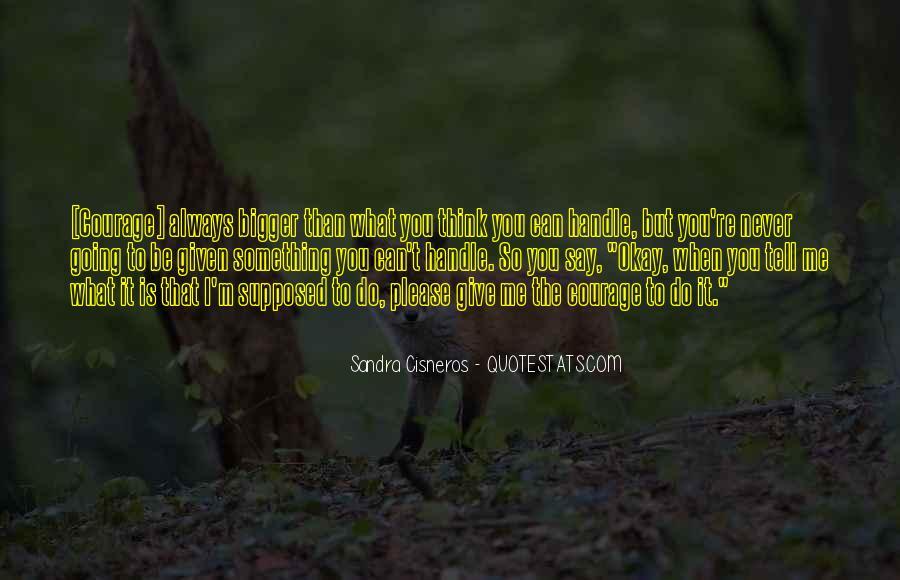 Cat Zingano Quotes #296017