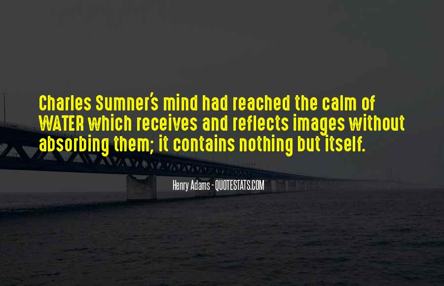 Charles Sumner Quotes #516647
