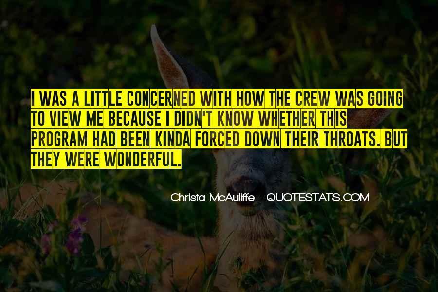 Christa Mcauliffe Quotes #365374