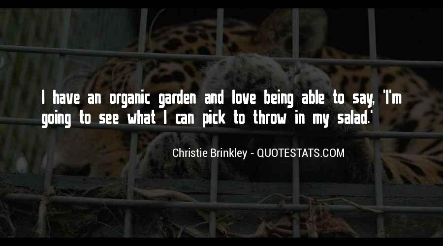 Christie Brinkley Quotes #271988