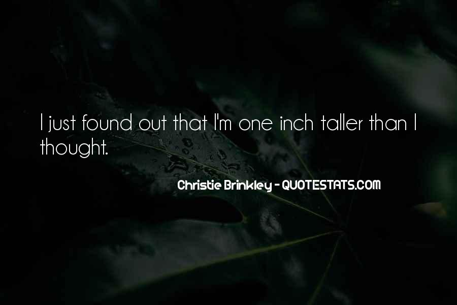 Christie Brinkley Quotes #959168