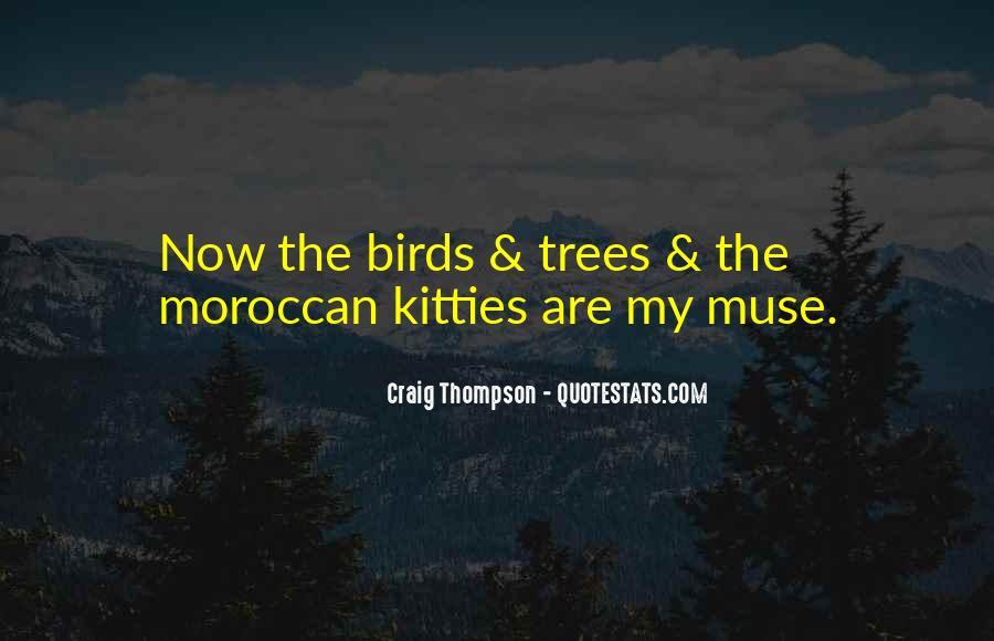 Craig Thompson Quotes #958062