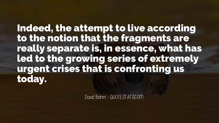 David Bohm Quotes #551788