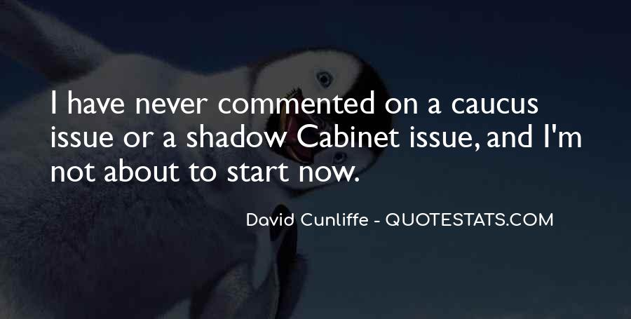 David Cunliffe Quotes #479299