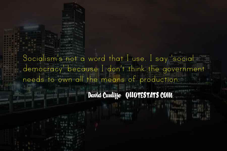 David Cunliffe Quotes #8582
