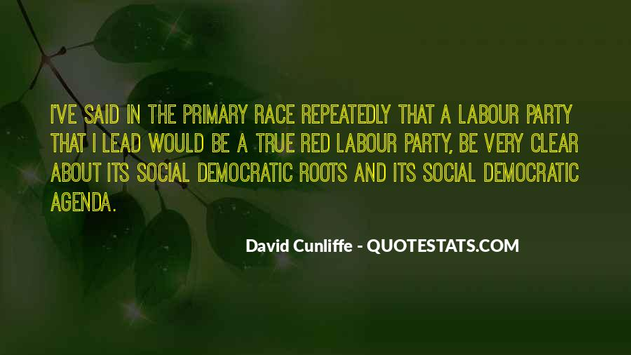 David Cunliffe Quotes #988270