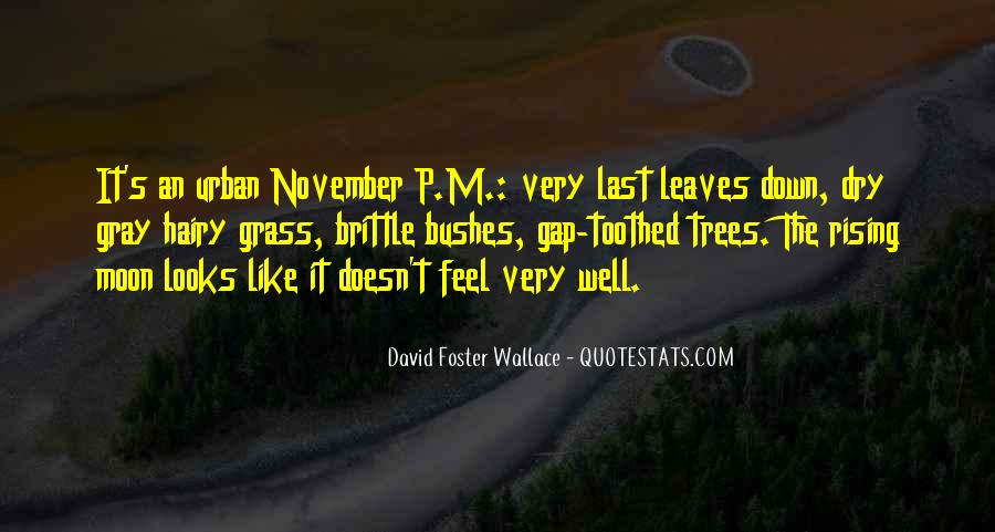 David Gray Quotes #1038464