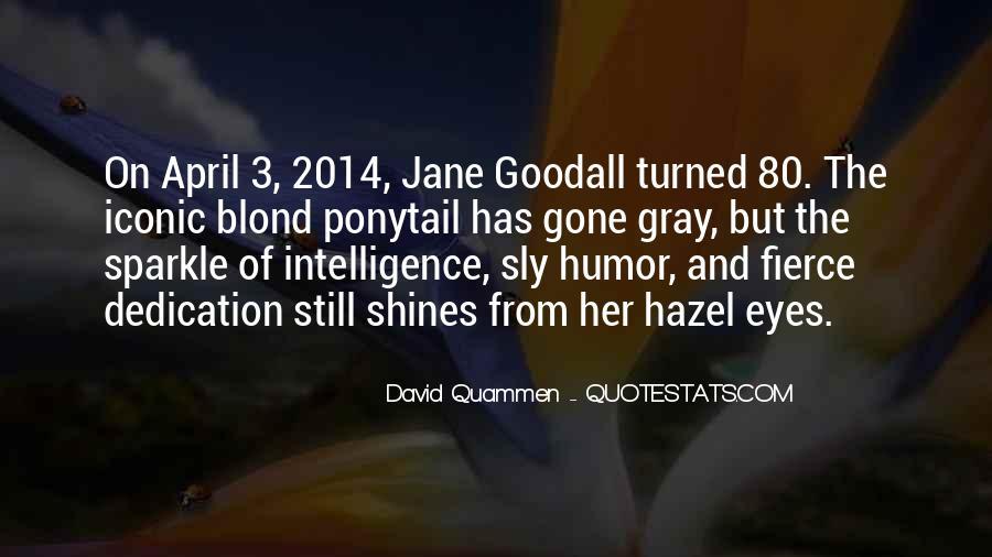 David Gray Quotes #114107