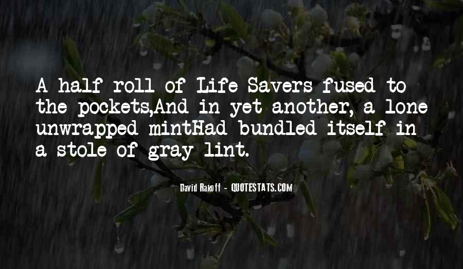David Gray Quotes #1244651