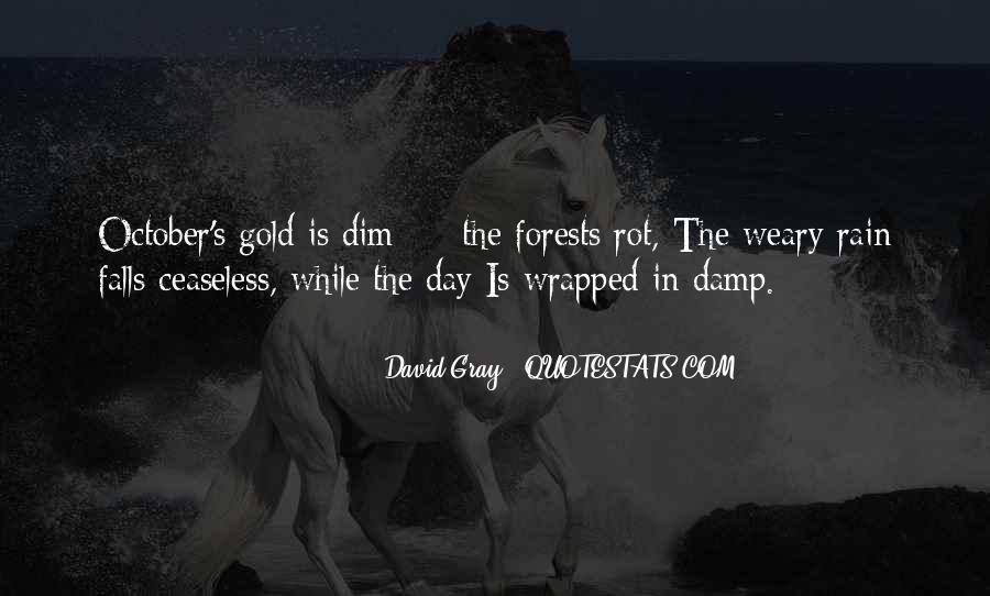 David Gray Quotes #244527