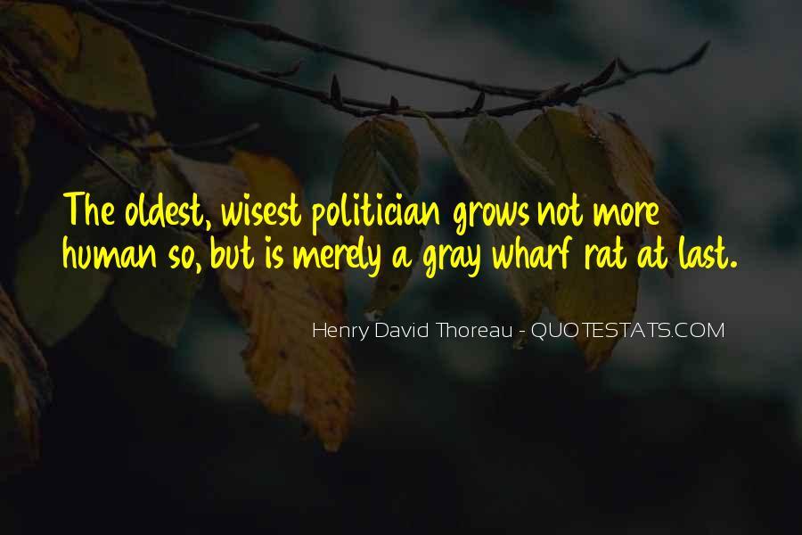 David Gray Quotes #639478