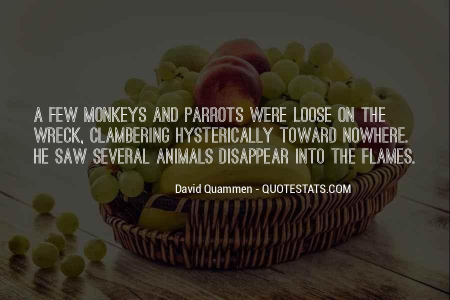David Quammen Quotes #883821