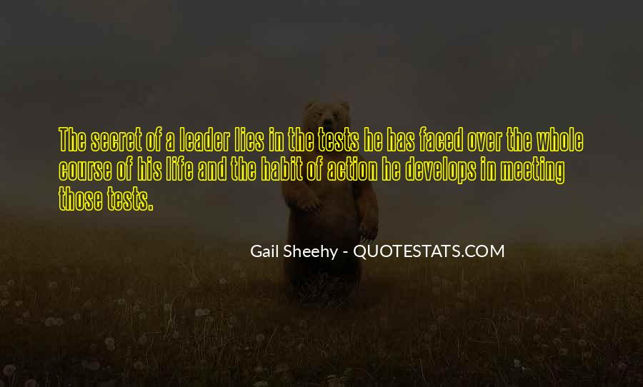 Gail Sheehy Quotes #673351