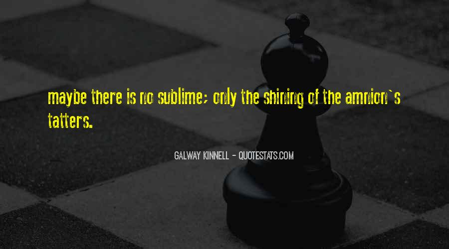 Galway Kinnell Quotes #1494187