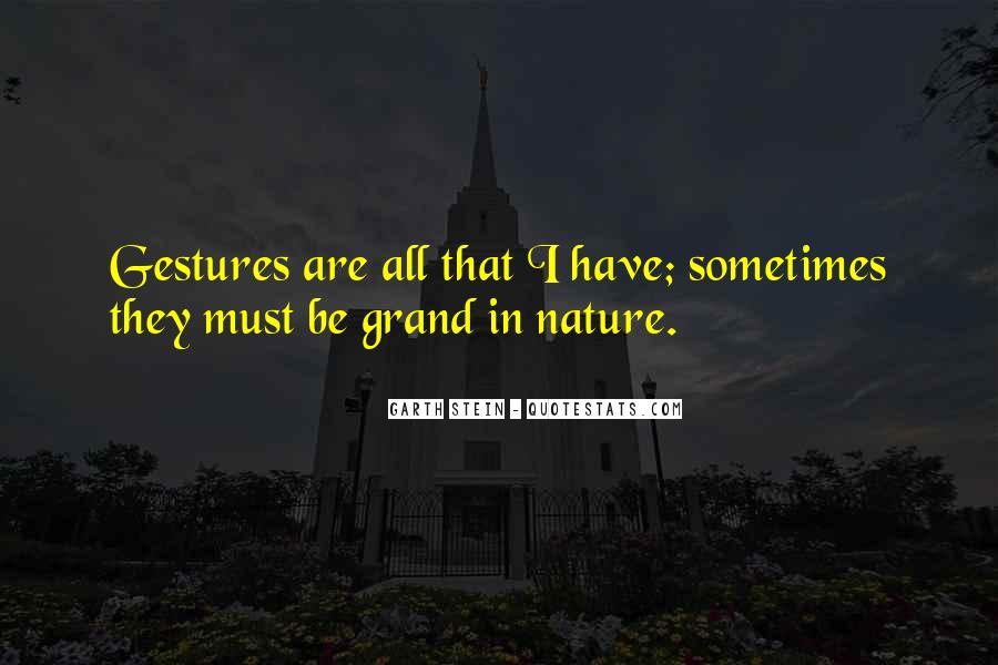 Garth Stein Quotes #1064932