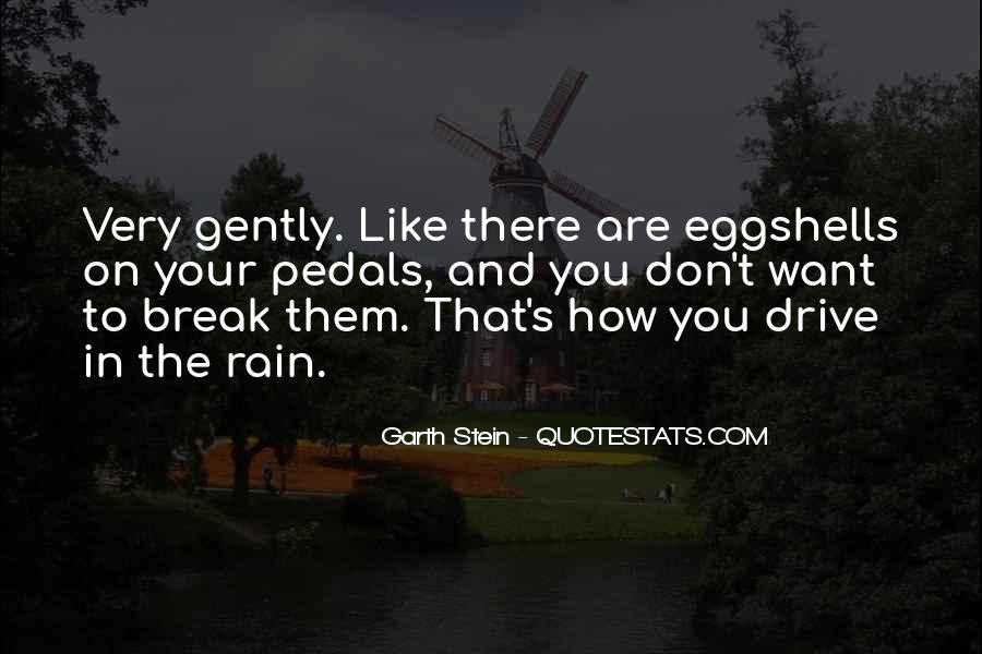 Garth Stein Quotes #1068809