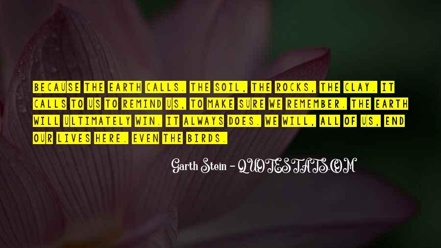 Garth Stein Quotes #1092994