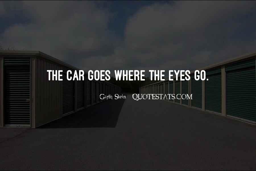 Garth Stein Quotes #116097