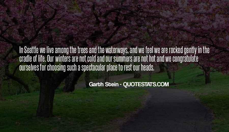 Garth Stein Quotes #1174725