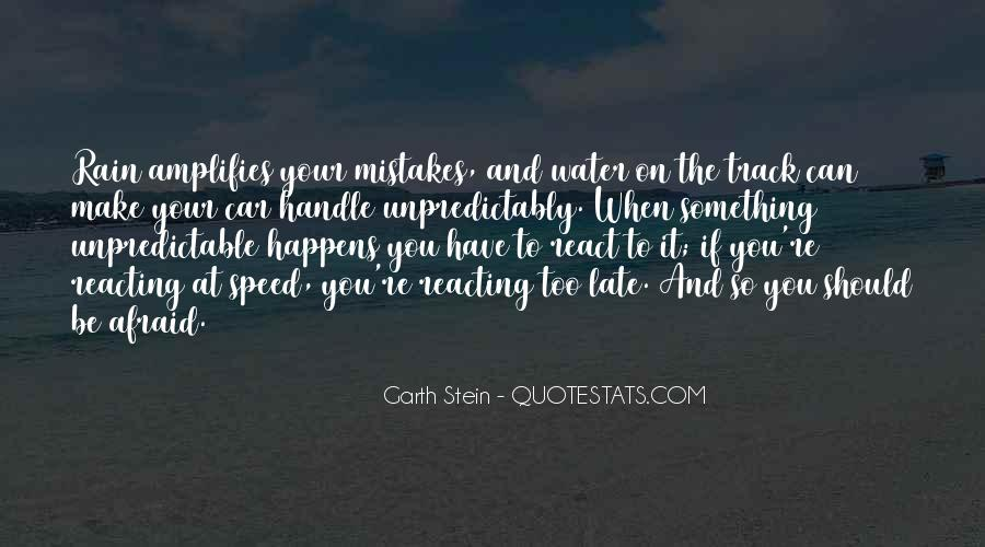 Garth Stein Quotes #154997