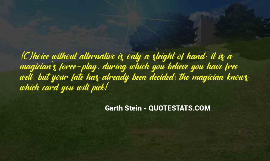Garth Stein Quotes #21154