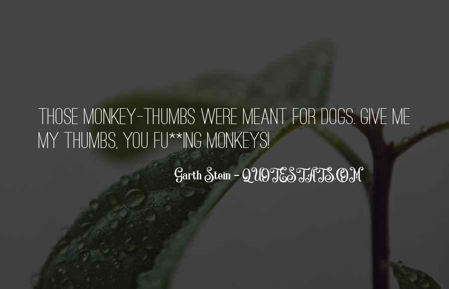 Garth Stein Quotes #299947