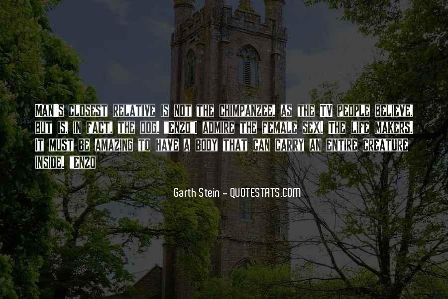Garth Stein Quotes #426343