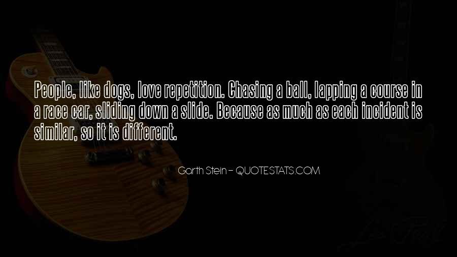 Garth Stein Quotes #452149