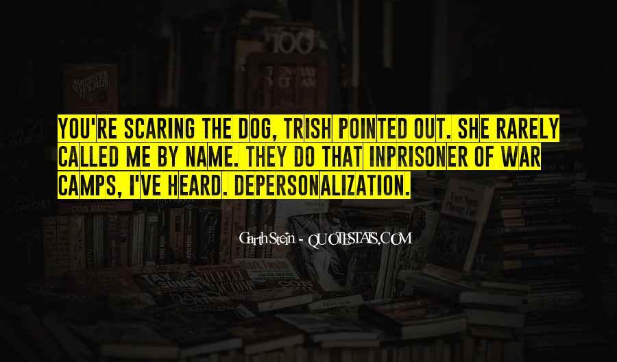 Garth Stein Quotes #468768