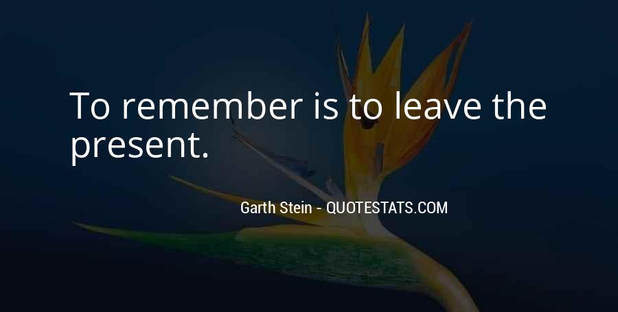 Garth Stein Quotes #475123