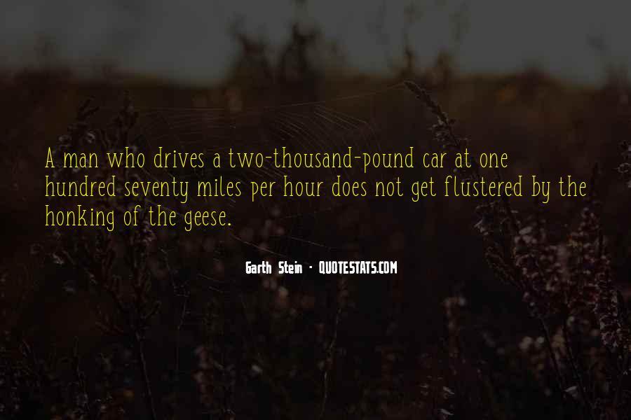 Garth Stein Quotes #492326