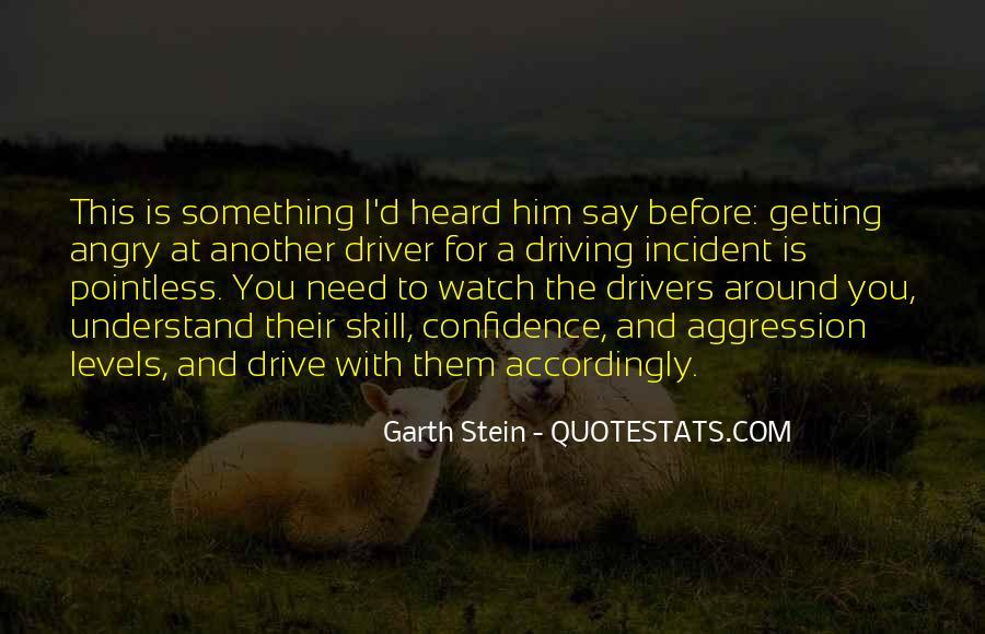 Garth Stein Quotes #64620