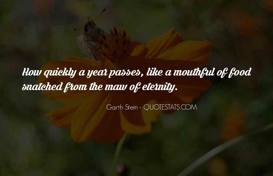 Garth Stein Quotes #687839