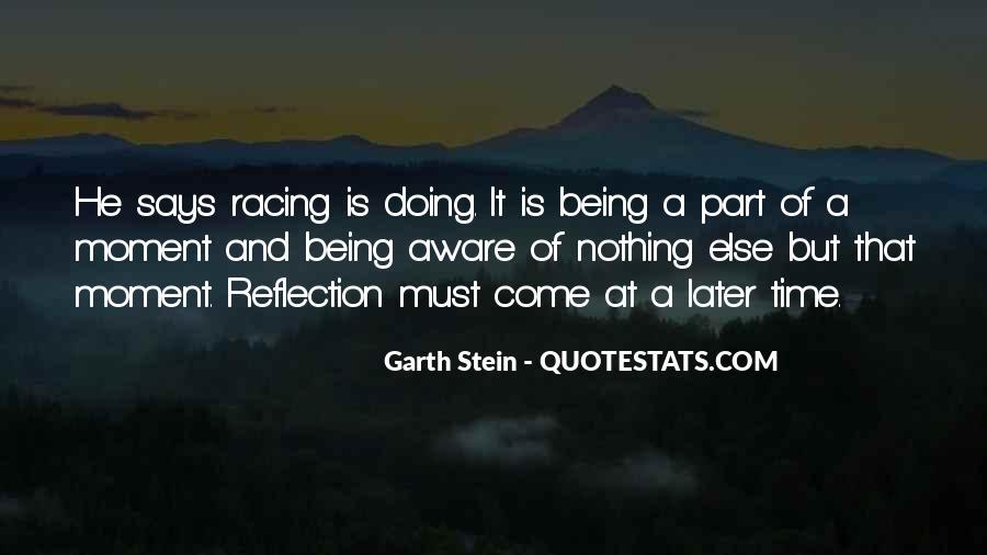 Garth Stein Quotes #717561
