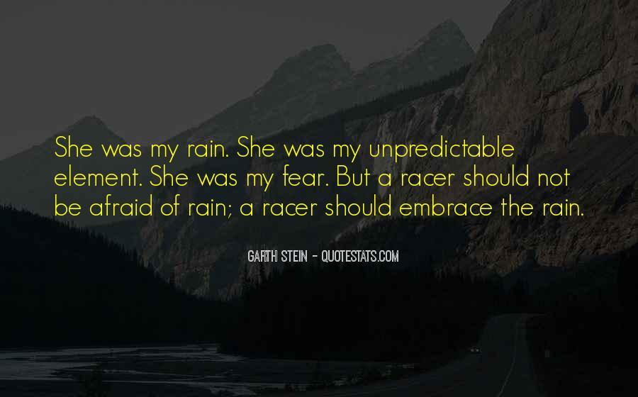 Garth Stein Quotes #736990