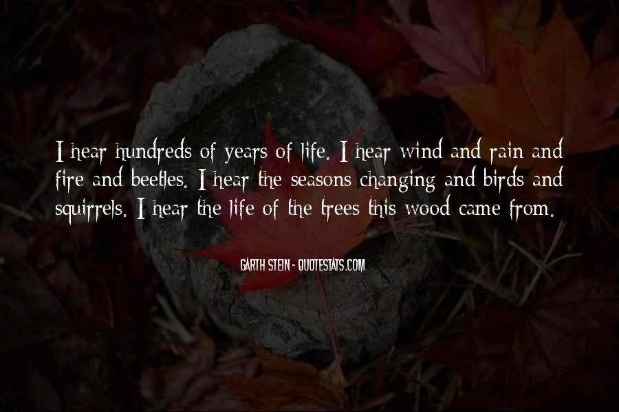 Garth Stein Quotes #751115