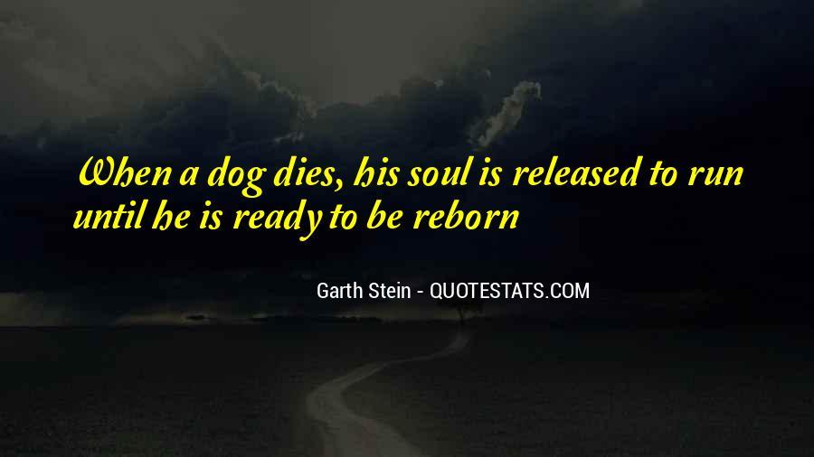 Garth Stein Quotes #872610