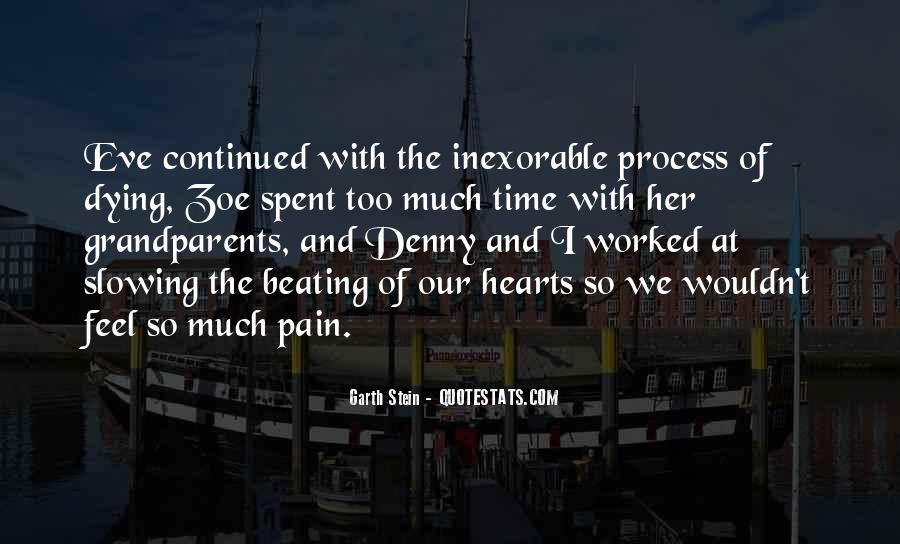 Garth Stein Quotes #984071