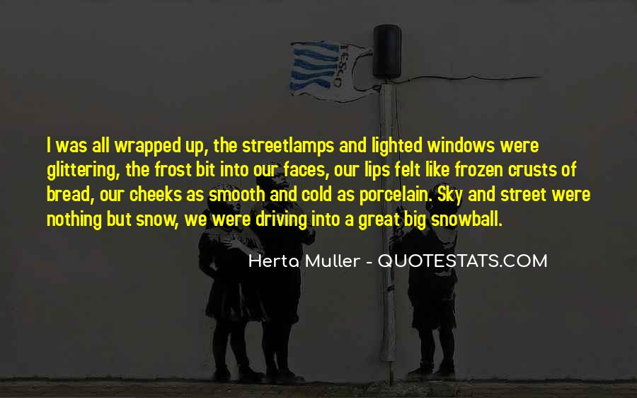 Herta Muller Quotes #1427212