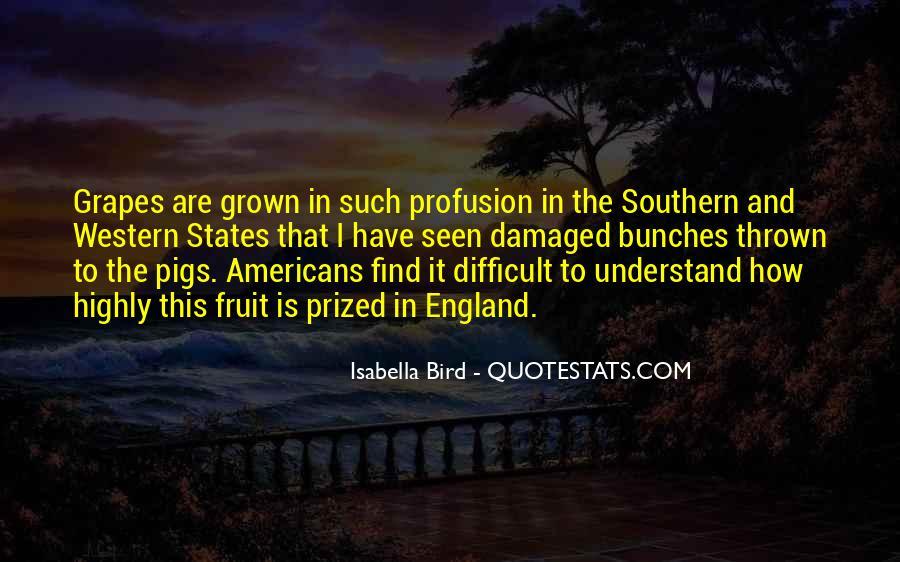 Isabella Bird Quotes #1013837