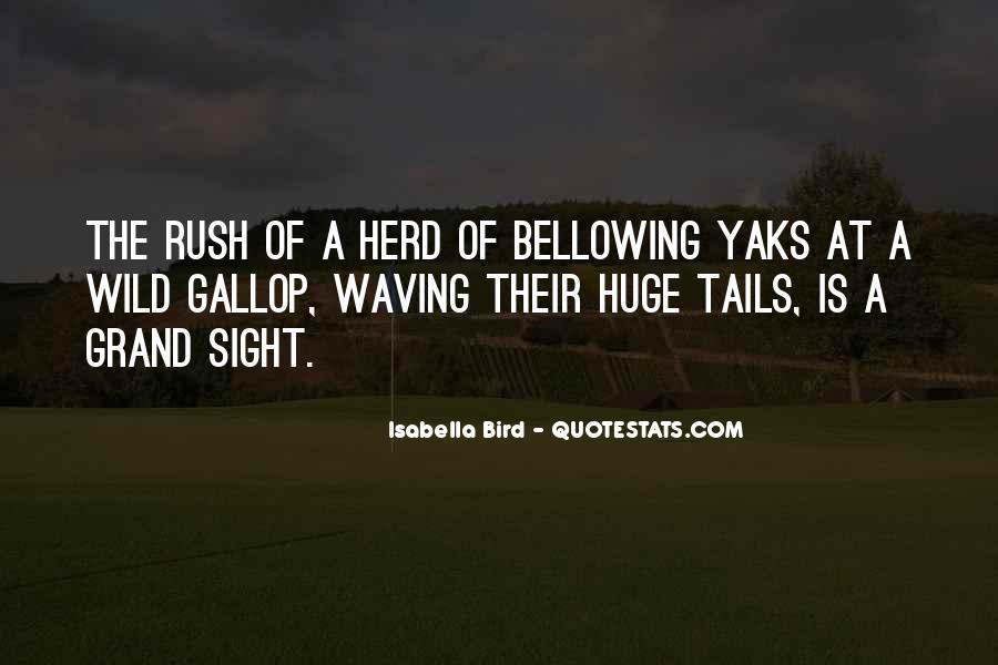 Isabella Bird Quotes #1309040