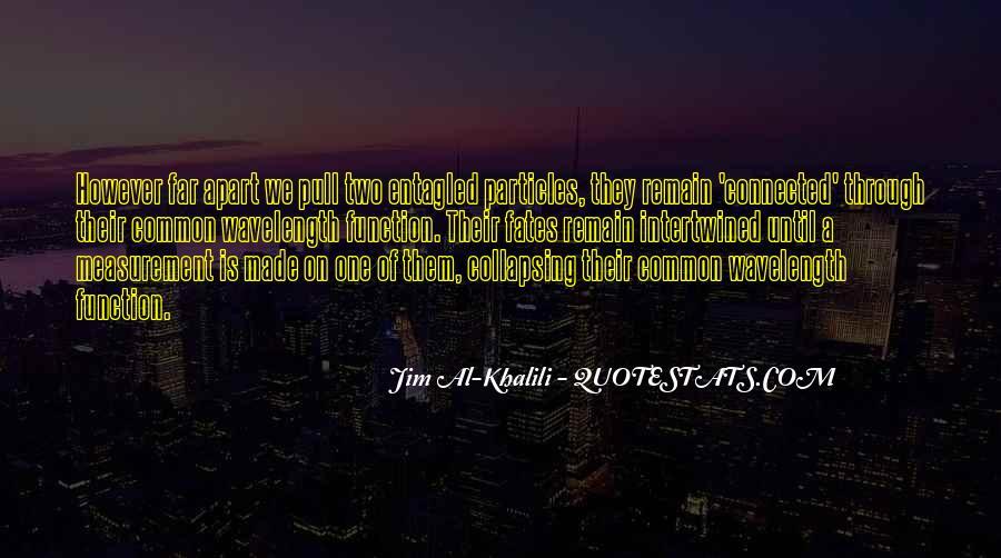 Jim Al Khalili Quotes #154157