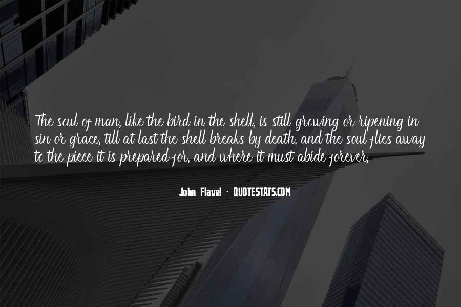 John Flavel Quotes #218771
