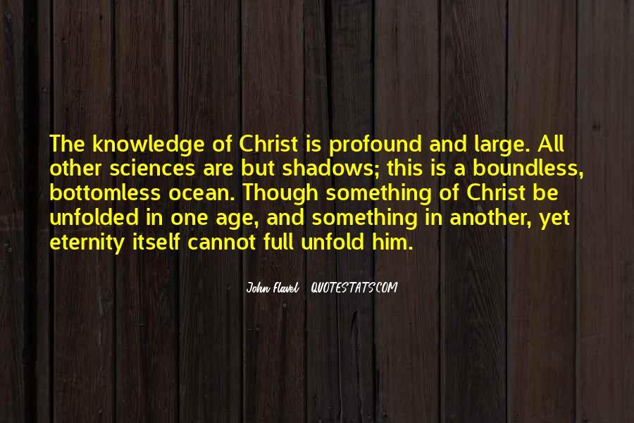John Flavel Quotes #243528