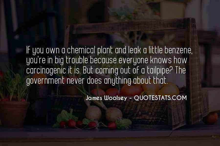 John Harsanyi Quotes #178410