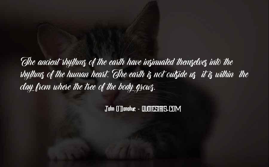 John O'toole Quotes #211621