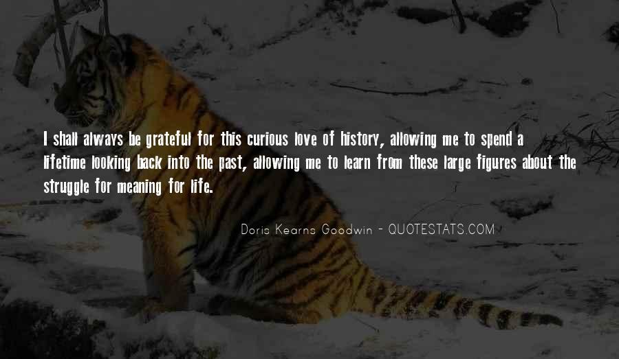 Quotes About History And Its Meaning #516015