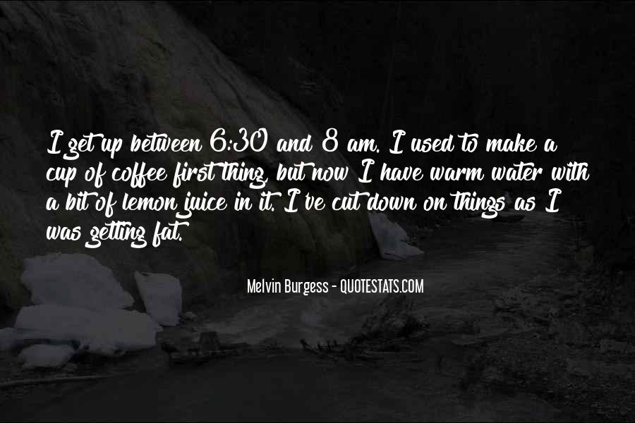 Melvin Burgess Quotes #1762036
