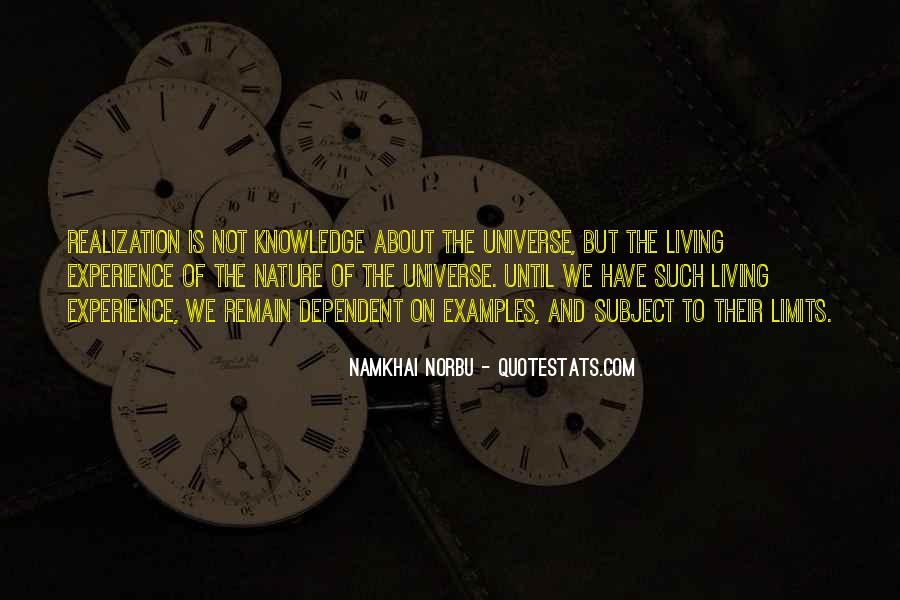 Namkhai Norbu Quotes #1771421