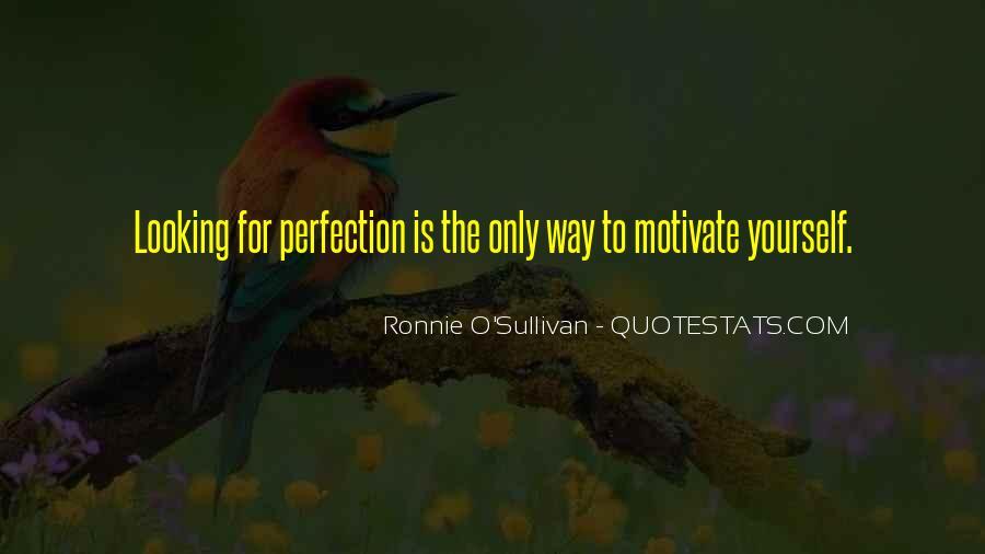 O'shea Quotes #3913